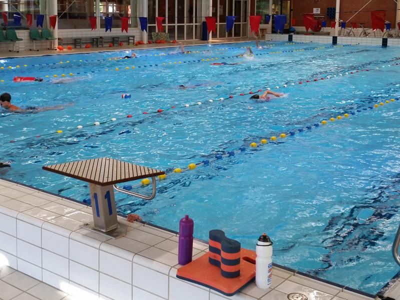 Eerste-zwemtraining-nieuwe-seizoen-2014
